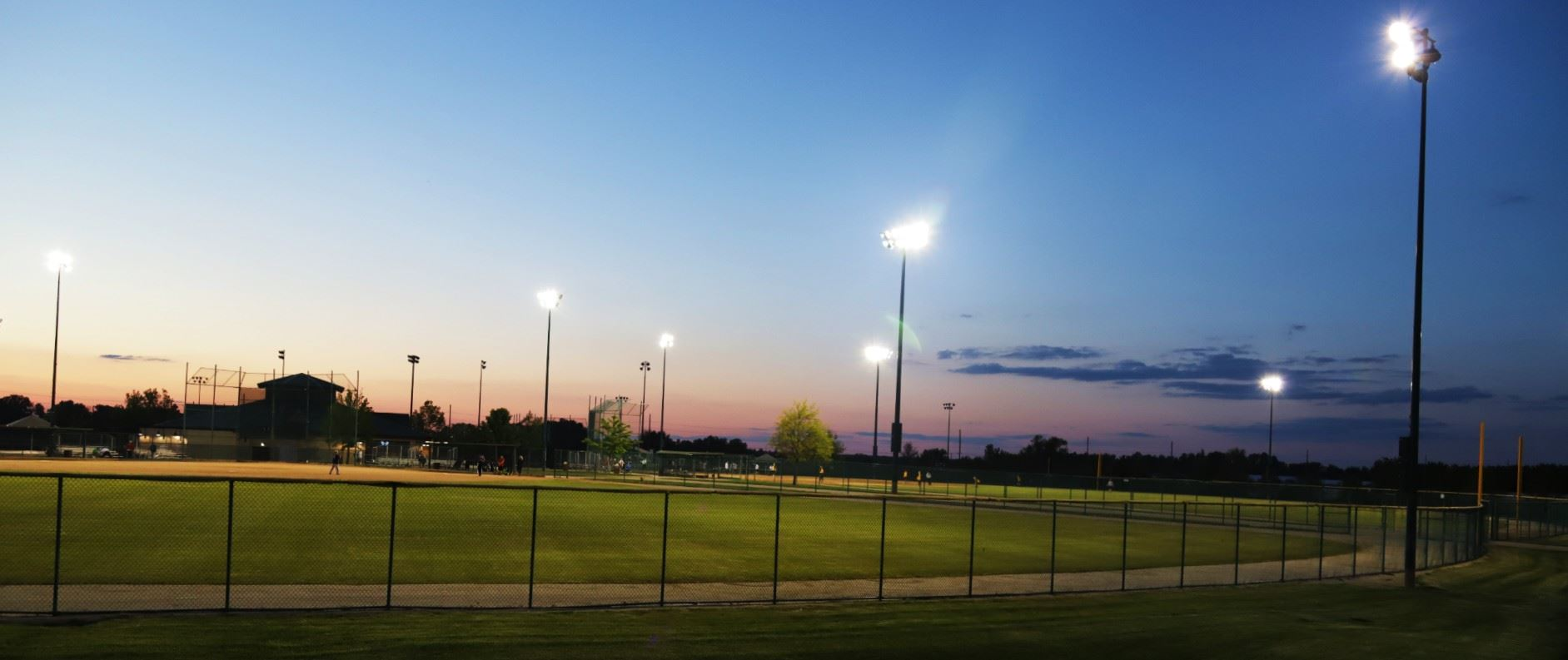 Field at Night